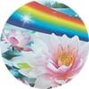fabuloso_fiori di loto_mini