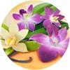 fabuloso_vaniglia_e_orchidea_mini