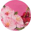 fabuloso_fiori_di_ciliegio_profume_mini