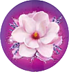 fabuloso_magnolia_e_lavanda_profume_mini