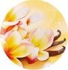 fabuloso_vaniglia_e_orchidea_profume